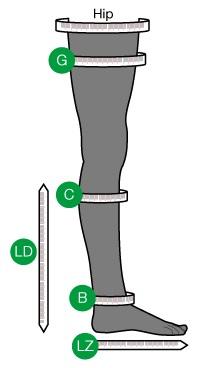 ActiLymph measurement